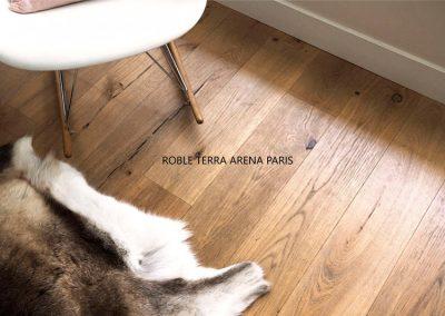 Roble-Terra-arena-París